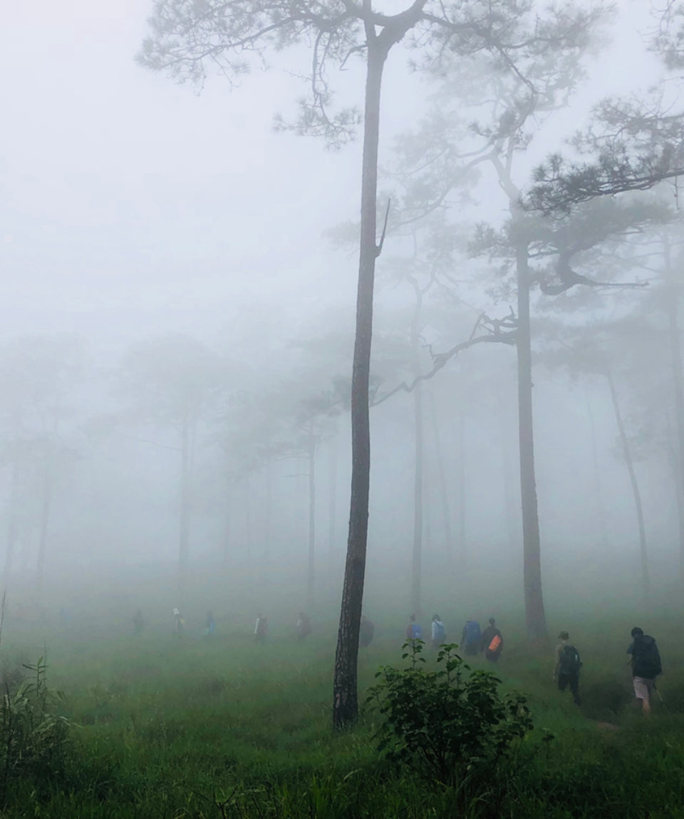 Trekking in the mist